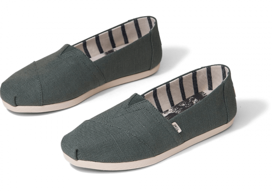 toms-bonsai-green-cipo
